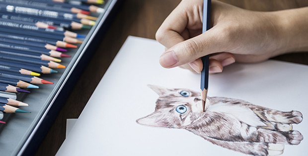 Learn a new skill drawing